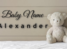 Baby Name Alexander