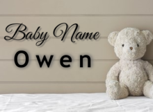 Baby Name Owen