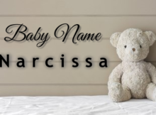 Baby Name Narcissa