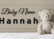 Baby Name Hannah